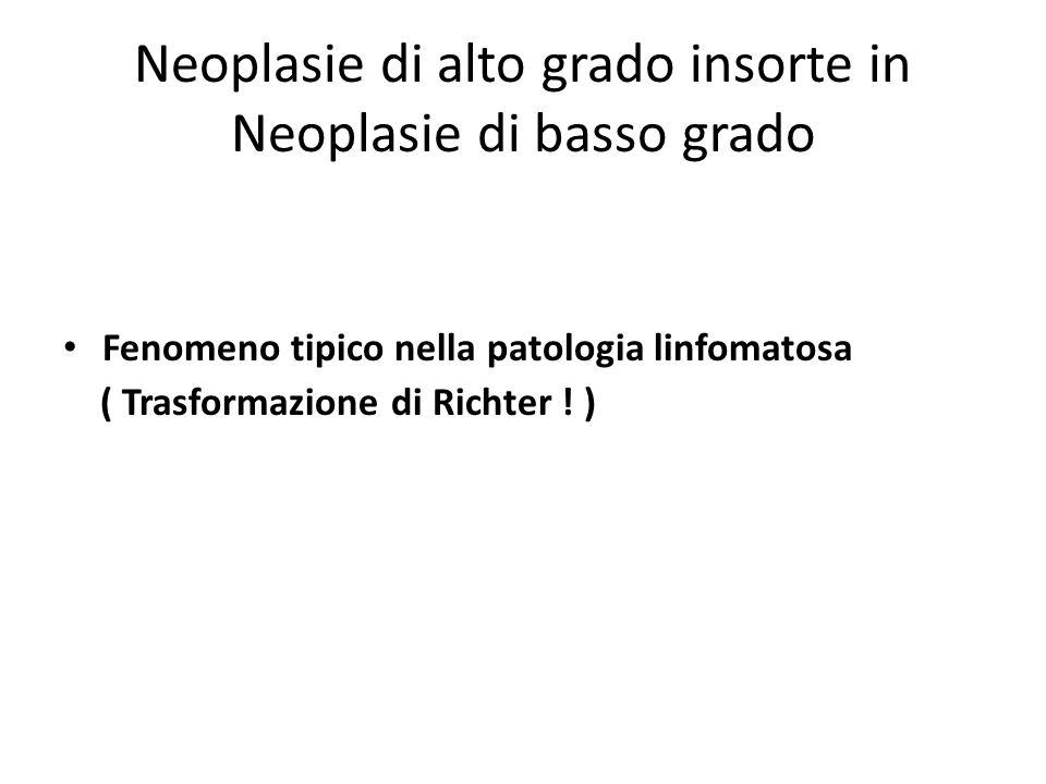 Neoplasie di alto grado insorte in Neoplasie di basso grado Fenomeno tipico nella patologia linfomatosa ( Trasformazione di Richter ! )