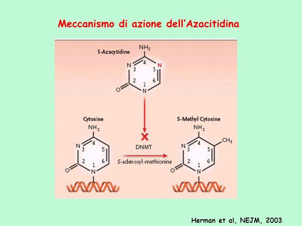 Meccanismo di azione dellAzacitidina Herman et al, NEJM, 2003