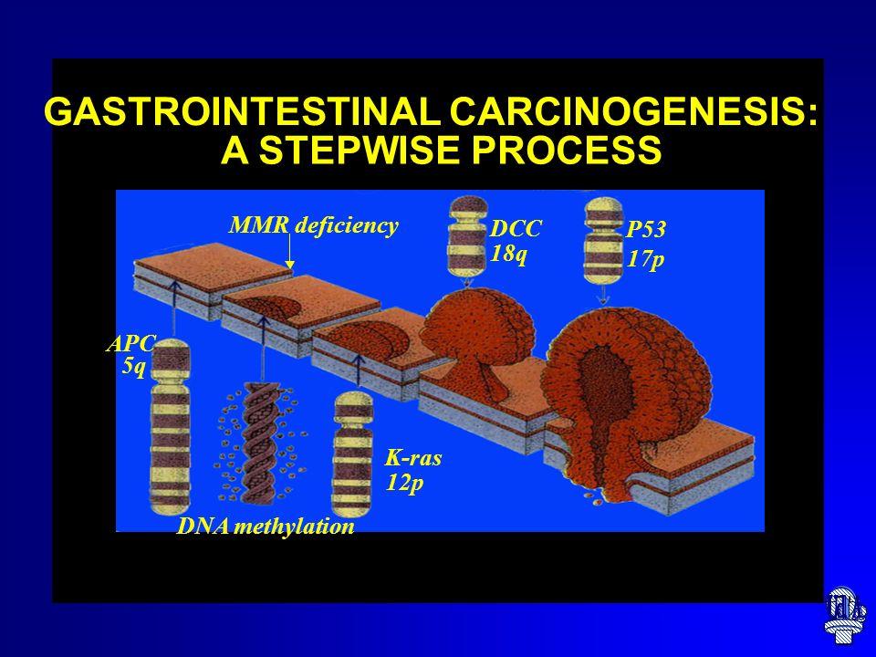 Proteina del gene APC Regola la proliferazione delle cellule intestinali Guida la migrazione e lincastonamento delle cellule nellintestino formando il