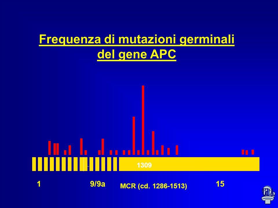 MUTAZIONI GENE APC Le mutazioni si riscontrano nel 70% di FAP Le mutazioni sono assenti se i polipi sono meno di 10 nellintestino --Mutazioni frameshi