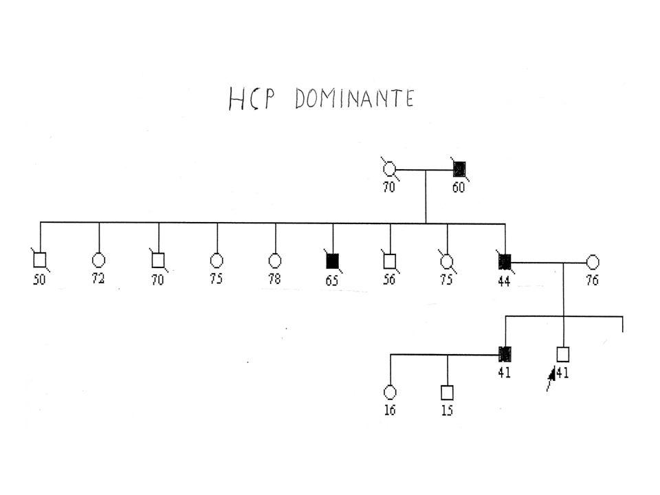 Forma ereditaria : possibili geni implicati Forma dominante 43% --HCP2 mappato su 10q --ELAC2 mappato su 17p11 forma recessiva 40% --RNASEL mappato su