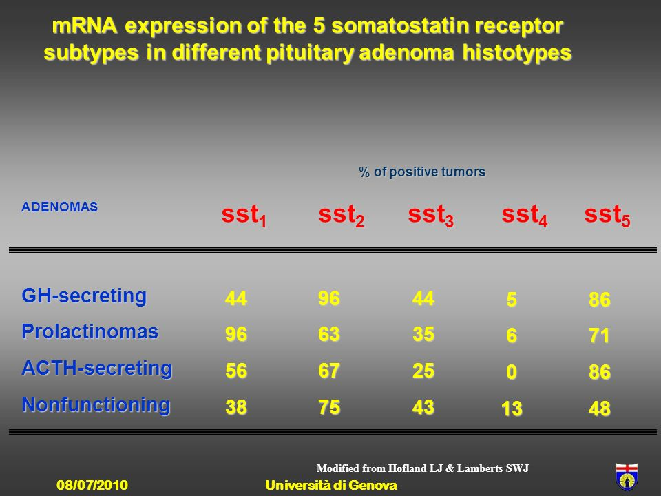 mRNA expression of the 5 somatostatin receptor subtypes in different pituitary adenoma histotypes % of positive tumors sst 1 sst 2 sst 3 sst 4 sst 5 sst 1 sst 2 sst 3 sst 4 sst 5 ADENOMAS GH-secretingProlactinomasACTH-secretingNonfunctioning 449656389663677544352543 5601386718648 Modified from Hofland LJ & Lamberts SWJ 08/07/2010Università di Genova