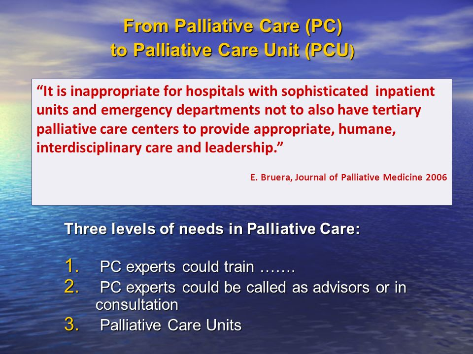 From Palliative Care (PC) to Palliative Care Unit (PCU ) Three levels of needs in Palliative Care: 1. PC experts could train ……. 2. PC experts could b