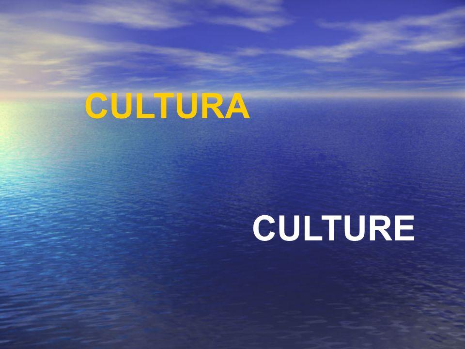CULTURA CULTURE