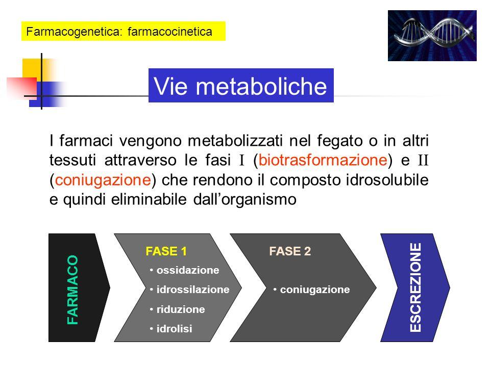 Farmacogenetica: farmacocinetica Vie metaboliche FARMACO FASE 1FASE 2 ESCREZIONE ossidazione idrossilazione riduzione idrolisi coniugazione I farmaci