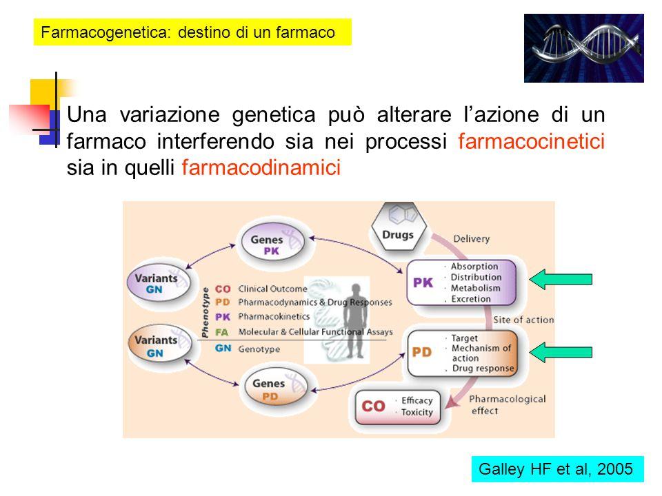 Farmacogenetica: destino di un farmaco Una variazione genetica può alterare lazione di un farmaco interferendo sia nei processi farmacocinetici sia in