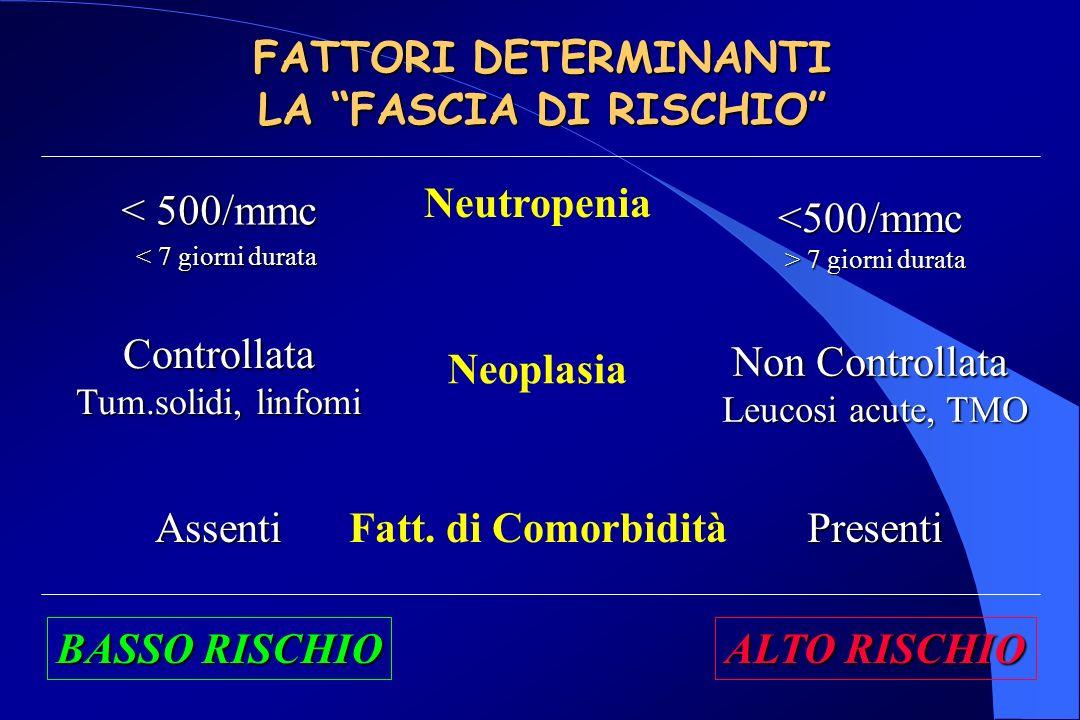 FATTORI DETERMINANTI LA FASCIA DI RISCHIO Neutropenia < 500/mmc < 7 giorni durata < 7 giorni durata <500/mmc > 7 giorni durata Neoplasia Controllata Tum.solidi, linfomi Non Controllata Leucosi acute, TMO Fatt.