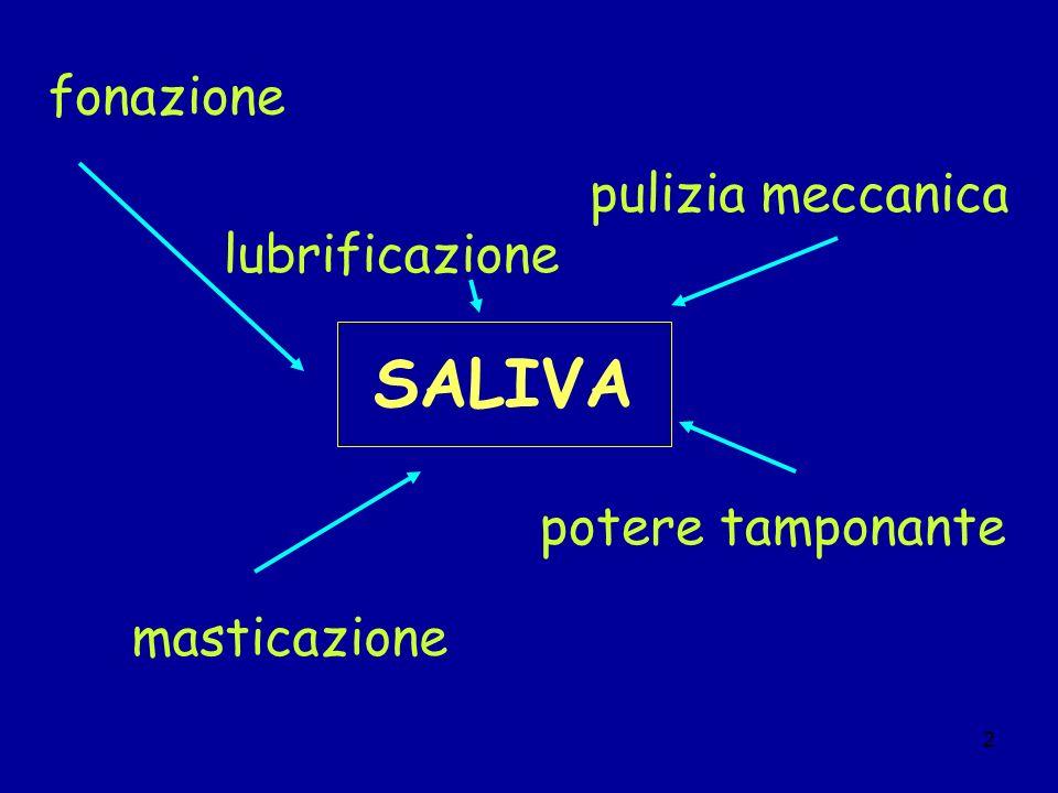 2 SALIVA fonazione masticazione lubrificazione potere tamponante pulizia meccanica
