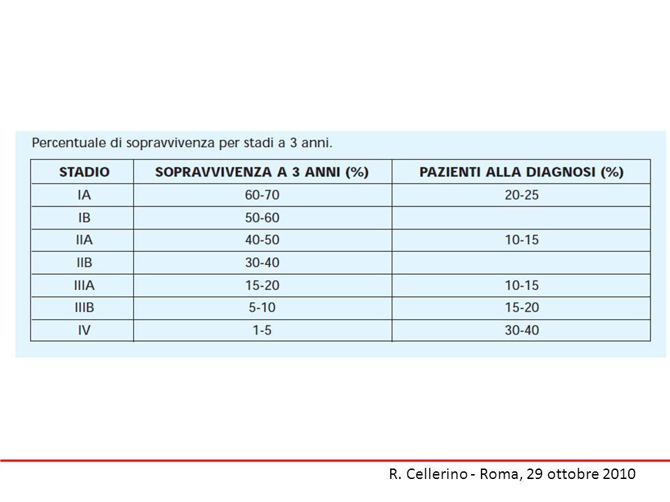 14 + 4 14 + 3 R. Cellerino - Roma, 29 ottobre 2010