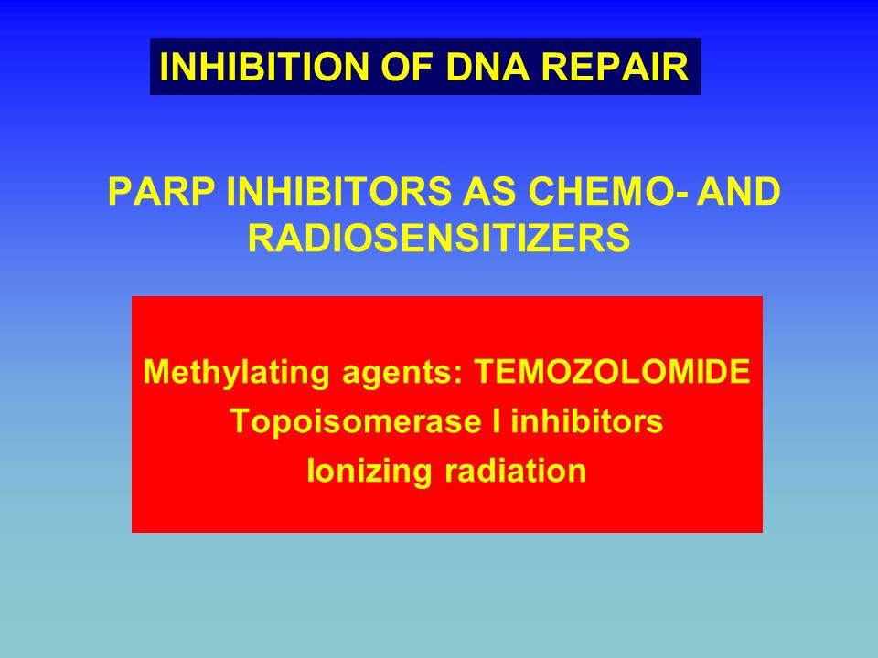 PARP INHIBITORS AS CHEMO- AND RADIOSENSITIZERS Methylating agents: TEMOZOLOMIDE Topoisomerase I inhibitors Ionizing radiation INHIBITION OF DNA REPAIR