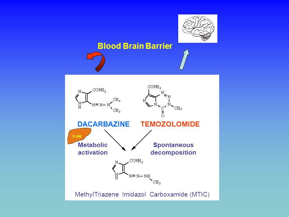 Blood Brain Barrier Spontaneous decomposition DACARBAZINE TEMOZOLOMIDE MethylTriazene Imidazol Carboxamide (MTIC) Metabolic activation P-450