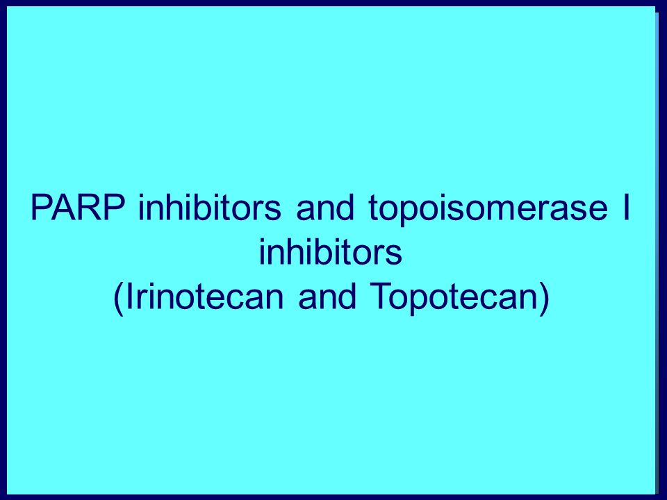 PARP inhibition enhances DNA damage induced by topoisomerase I inhibitors Fast repair + PARP inhibitorsActive PARP Slow repair DNA damage Cancer Cell