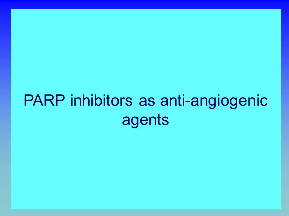 Chronic inflammation AP-1 HIF-1 PROLIFERATION OF INFLAMMATORY CELLS INDUCTION OF ANGIOGENESIS INCREASED ANGIOGENESIS INCREASED TUMOR GROWTH ACTIVATION