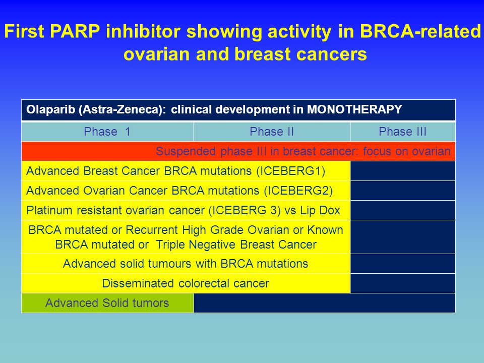 Olaparib (Astra-Zeneca): clinical development in MONOTHERAPY Phase 1Phase IIPhase III Suspended phase III in breast cancer: focus on ovarian Advanced