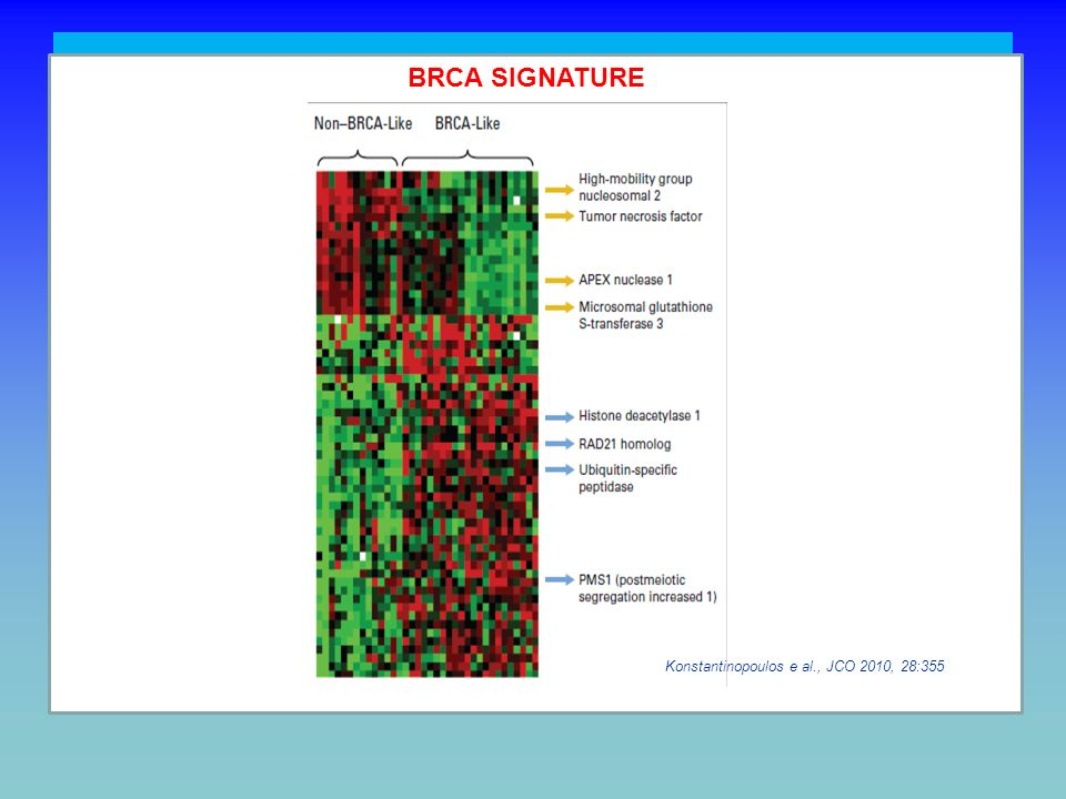 CHALLENGING TASKS (4) To define more precisely the patient population most likely to respond: potential signature of BRCAness (e.g. 60-gene assay to i