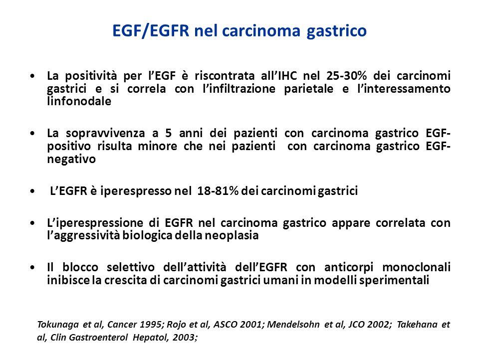 EGF/EGFR nel carcinoma gastrico La positività per lEGF è riscontrata allIHC nel 25-30% dei carcinomi gastrici e si correla con linfiltrazione parietal
