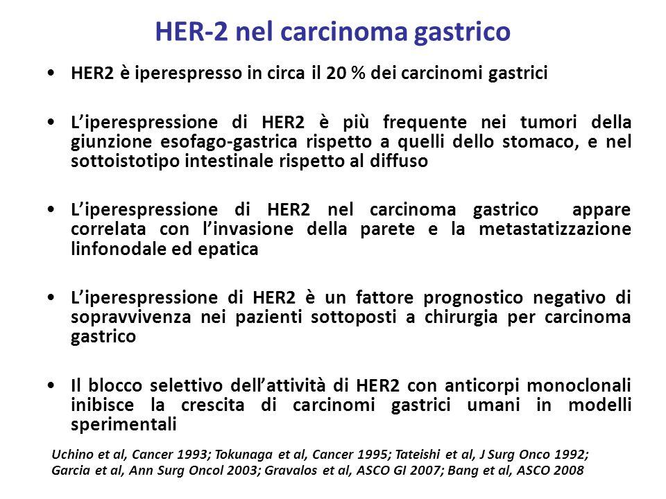 HER-2 nel carcinoma gastrico HER2 è iperespresso in circa il 20 % dei carcinomi gastrici Liperespressione di HER2 è più frequente nei tumori della giu