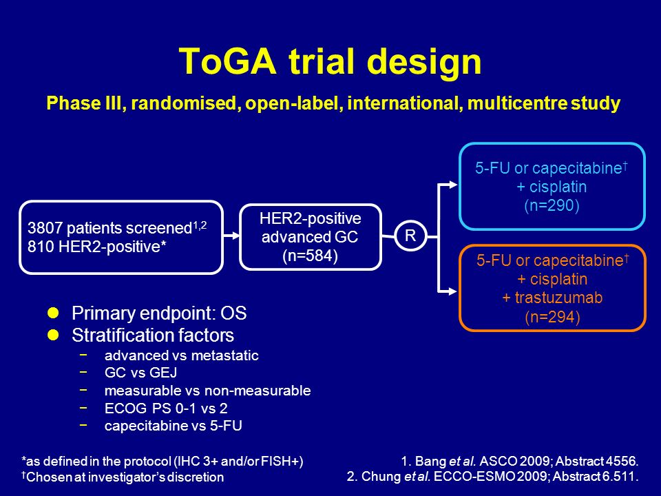 ToGA trial design HER2-positive advanced GC (n=584) 5-FU or capecitabine + cisplatin (n=290) R *as defined in the protocol (IHC 3+ and/or FISH+) Chose
