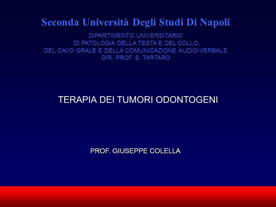 SUN CMF Seconda Università Degli Studi Di Napoli DIPARTIMENTO UNIVERSITARIO DI PATOLOGIA DELLA TESTA E DEL COLLO, DEL CAVO ORALE E DELLA COMUNICAZIONE
