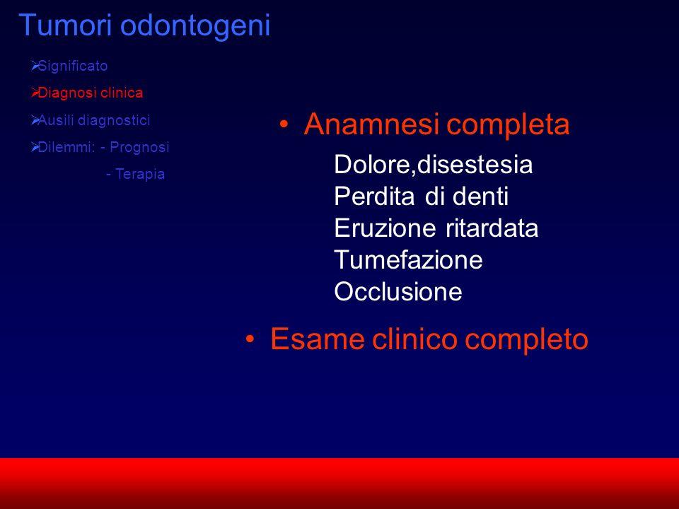 SUN CMF Tumori odontogeni Significato Diagnosi clinica Ausili diagnostici Dilemmi: - Prognosi - Terapia Anamnesi completa Dolore,disestesia Perdita di