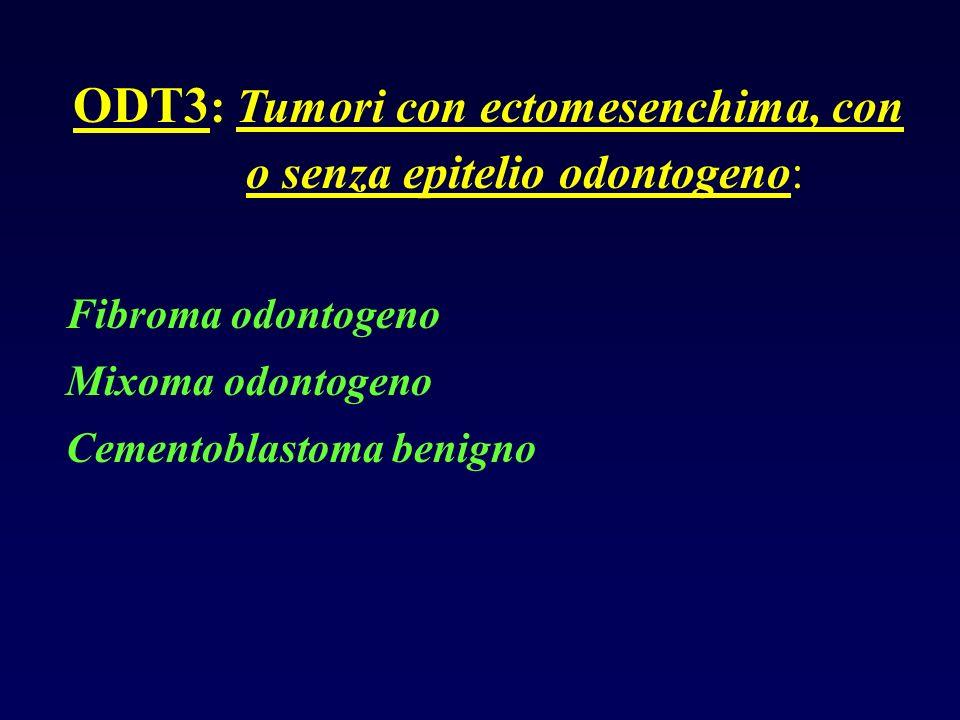 ODT3 : Tumori con ectomesenchima, con o senza epitelio odontogeno: Fibroma odontogeno Mixoma odontogeno Cementoblastoma benigno