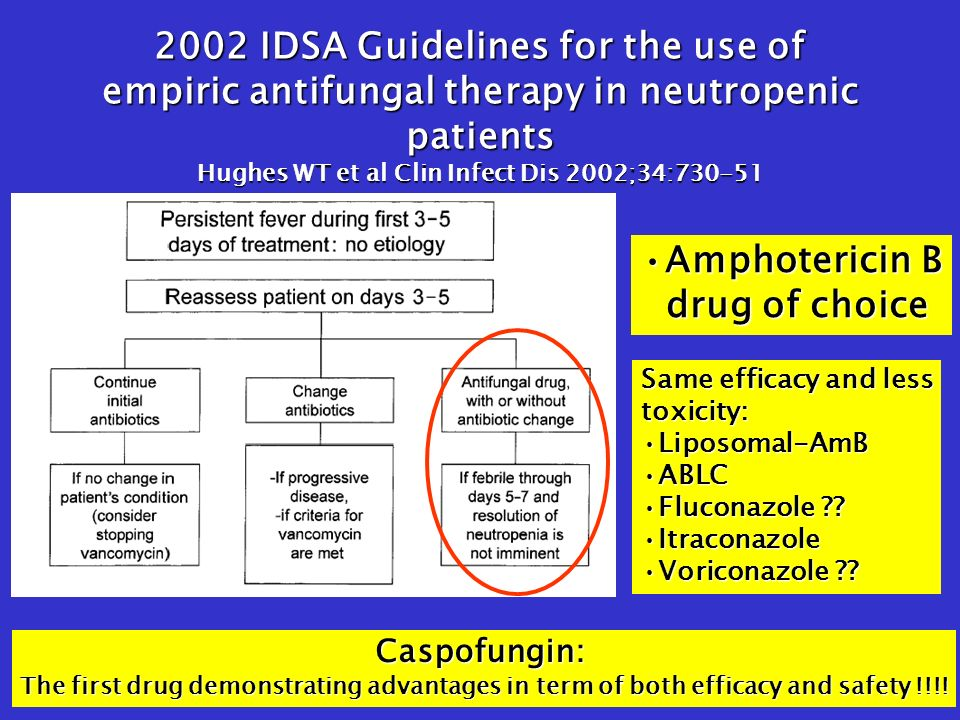 2002 IDSA Guidelines for the use of empiric antifungal therapy in neutropenic patients Hughes WT et al Clin Infect Dis 2002;34:730-51 Amphotericin BAmphotericin B drug of choice drug of choice Same efficacy and less toxicity: Liposomal-AmBLiposomal-AmB ABLCABLC Fluconazole Fluconazole .