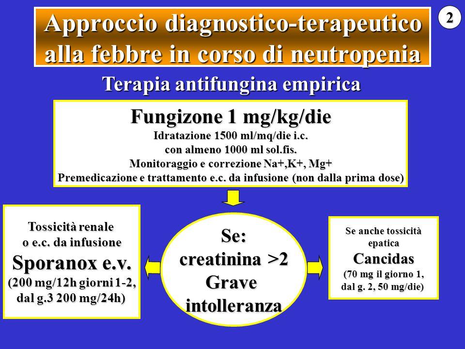 Approccio diagnostico-terapeutico alla febbre in corso di neutropenia Fungizone 1 mg/kg/die Idratazione 1500 ml/mq/die i.c. con almeno 1000 ml sol.fis