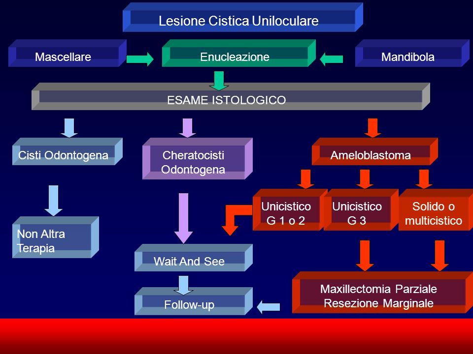 SUN CMF Lesione Cistica Uniloculare MascellareMandibolaEnucleazione ESAME ISTOLOGICO Cisti OdontogenaCheratocisti Odontogena Ameloblastoma Non Altra T