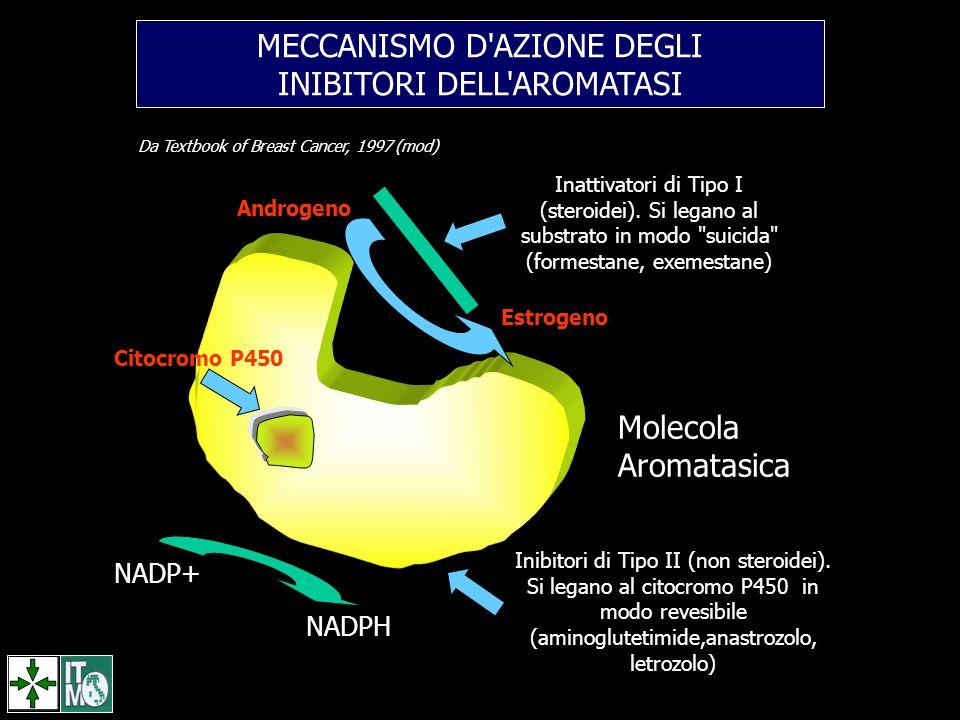 MECCANISMO D'AZIONE DEGLI INIBITORI DELL'AROMATASI Citocromo P450 Androgeno Estrogeno Inattivatori di Tipo I (steroidei). Si legano al substrato in mo
