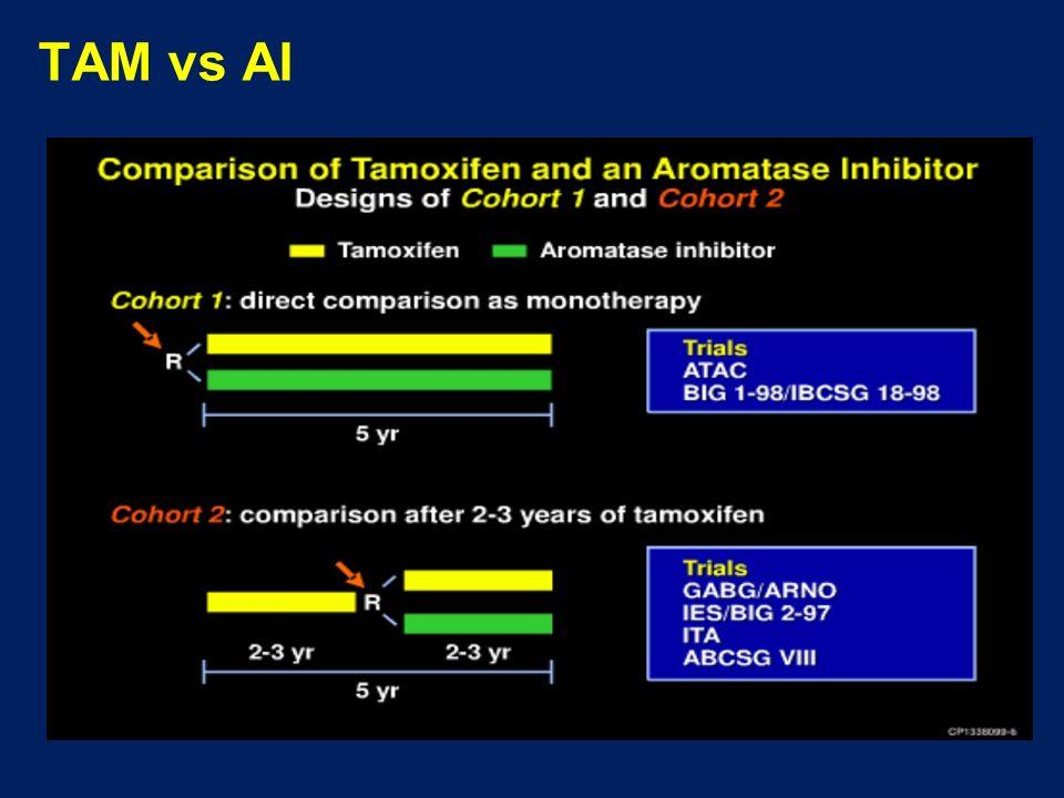 TAM vs AI