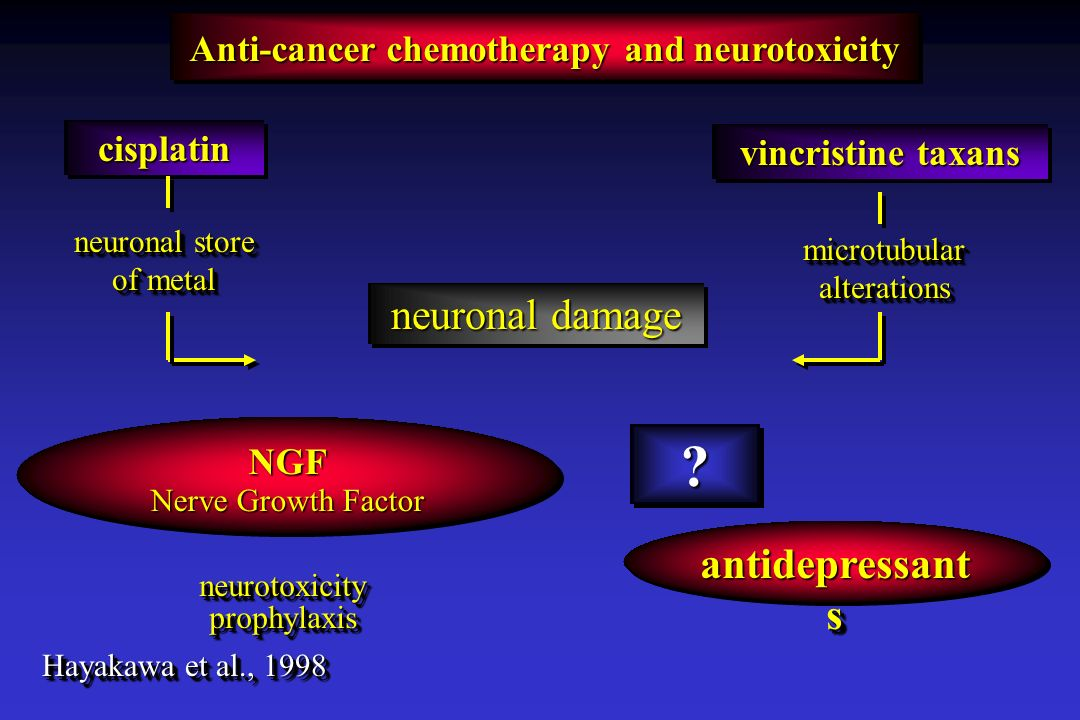 Anti-cancer chemotherapy and neurotoxicity antidepressant s ?? NGF Nerve Growth Factor NGF neurotoxicityprophylaxisneurotoxicityprophylaxis Hayakawa e