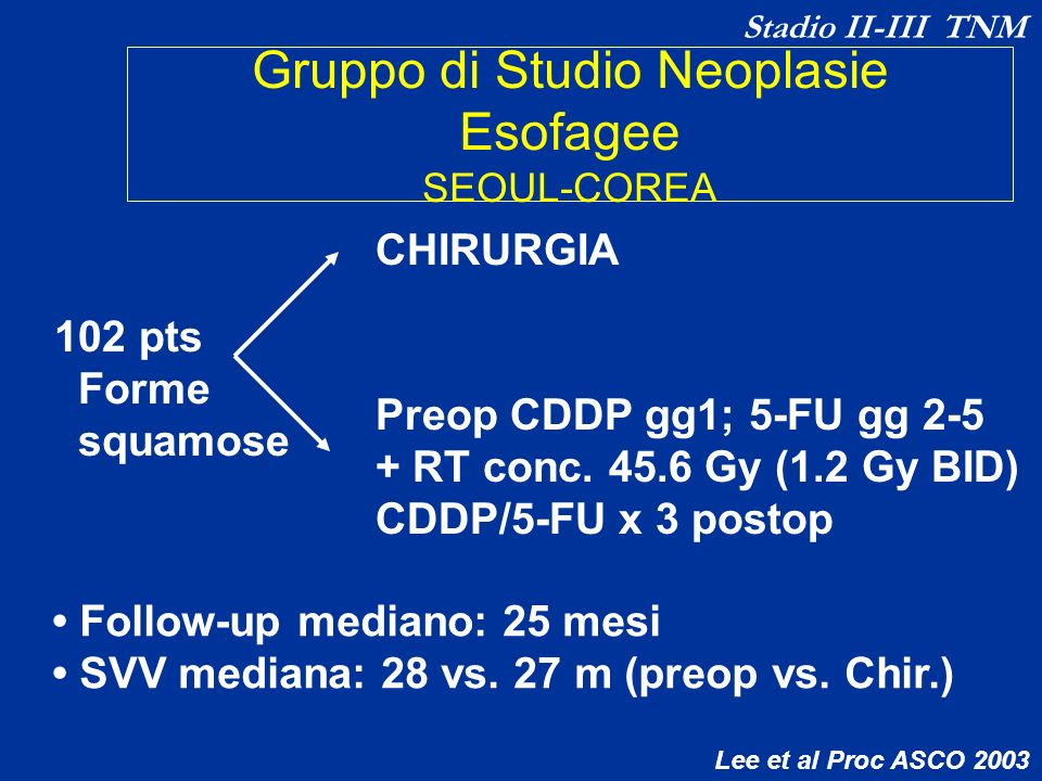 Gruppo di Studio Neoplasie Esofagee SEOUL-COREA 102 pts Forme squamose CHIRURGIA Preop CDDP gg1; 5-FU gg 2-5 + RT conc. 45.6 Gy (1.2 Gy BID) CDDP/5-FU