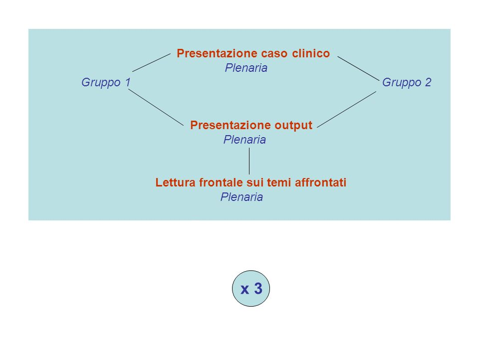 x 3 Presentazione caso clinico Plenaria Gruppo 1 Gruppo 2 Presentazione output Plenaria Lettura frontale sui temi affrontati Plenaria