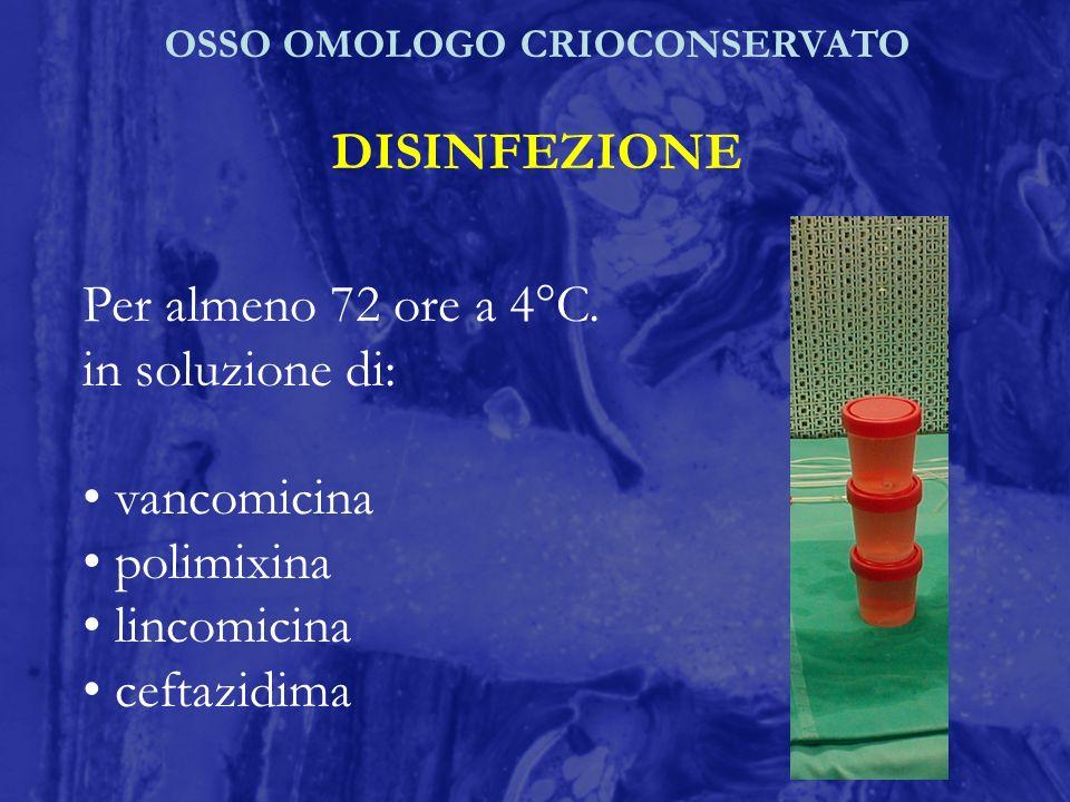 OSSO OMOLOGO CRIOCONSERVATO DISINFEZIONE Per almeno 72 ore a 4°C. in soluzione di: vancomicina polimixina lincomicina ceftazidima