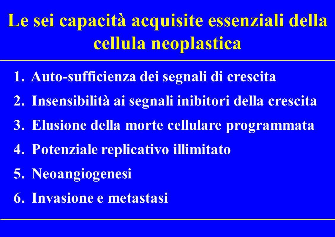 Requisiti essenziali della terapia molecolare 1.Deve essere rivolta contro un processo biologico importante (una o più molecole) 2.Il bersaglio deve essere misurabile, qualitativamente o quantitativamente 3.Il bersaglio deve essere correlato allevoluzione della neoplasia (validazione clinica)