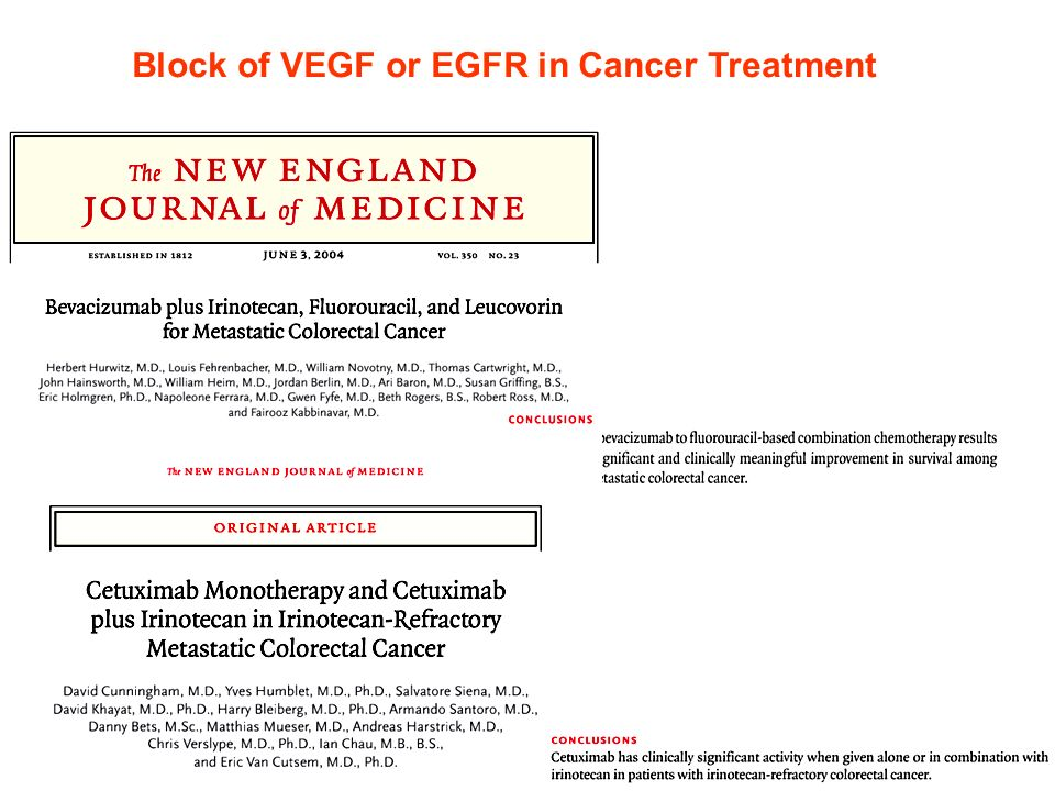 Block of VEGF or EGFR in Cancer Treatment