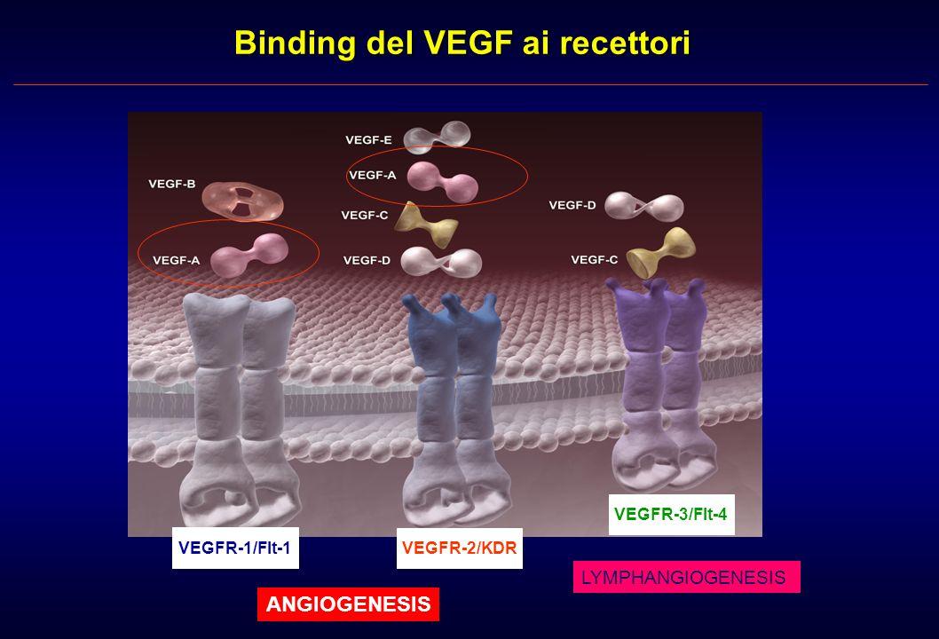 EGFR gefitinib (IRESSA ) erlotinib (Tarceva ) ZD6474 AEE788 VEGFR ZD6474 vatalanib AZD2171 SU11248 AEE788 sorafenib Bcr-Abl imatinib (Glivec ) c-Kit AZD2171 imatinib SU11248 PDGFR imatinib SU11248 sorafenib Key receptor tyrosine kinases and selective inhibitors