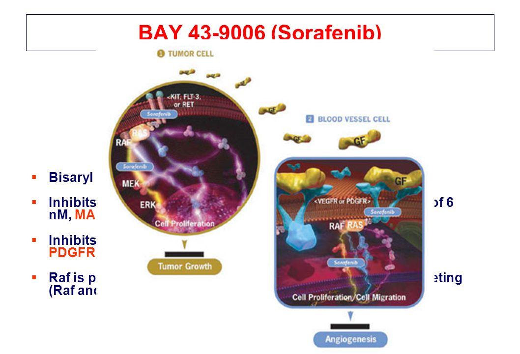 BAY 43-9006 (Sorafenib) Bisaryl urea, multiple targeted inhibitor. Inhibits B-Raf-1 kinase (including the mutated form) with IC 50 of 6 nM, MAPK, ERK.