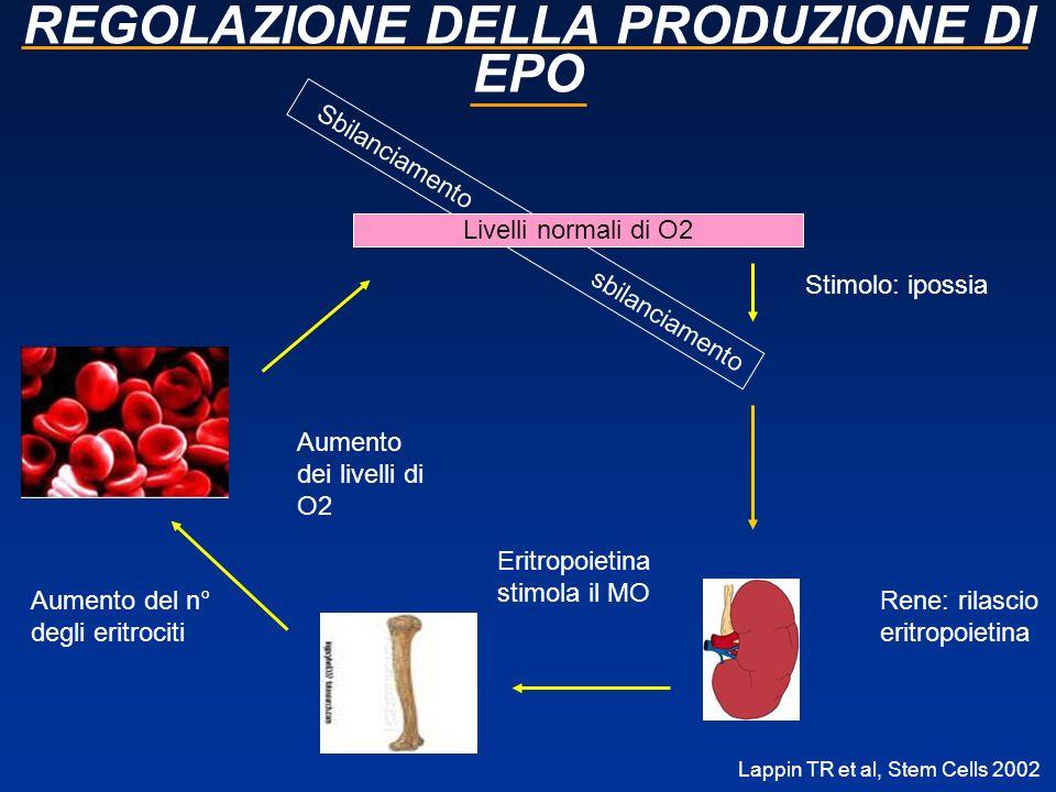 REGOLAZIONE DELLA PRODUZIONE DI EPO Lappin TR et al, Stem Cells 2002 Sbilanciamento sbilanciamento Livelli normali di O2 Stimolo: ipossia Rene: rilasc