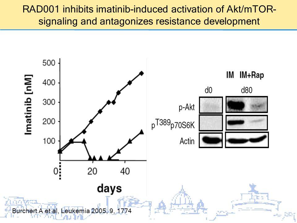 Burchert A et al, Leukemia 2005, 9, 1774 RAD001 inhibits imatinib-induced activation of Akt/mTOR- signaling and antagonizes resistance development