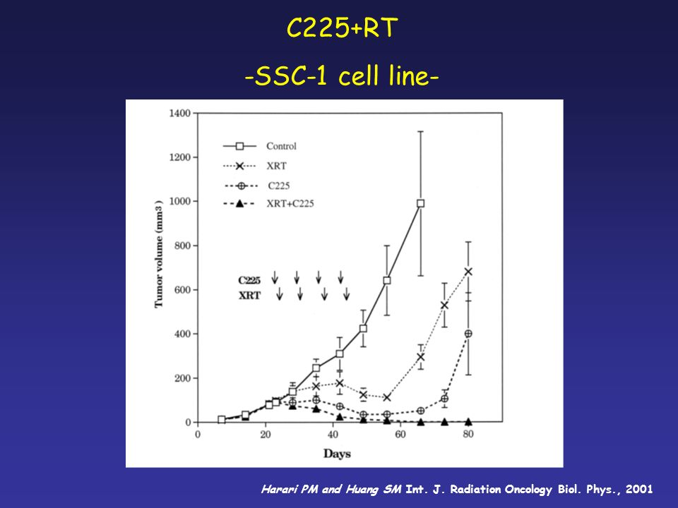 C225+RT -SSC-1 cell line- Harari PM and Huang SM Int. J. Radiation Oncology Biol. Phys., 2001