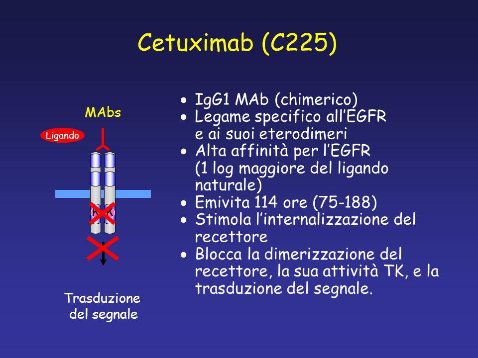 Inibitori dellattività TK Ligando KK Trasduzione del segnale Gli inibitori dellattività TK del recettore per lEGF (EGFFR-TK) competono con lATP per il legame del dominio catalitico Una volta legato, lEGFR-TKI inibisce lautofosforilazione dei residui tirosinici, bloccando i segnali attivanti i pathways proliferativi (MAPK) e antiapoptotici (AKT) ATP TKI