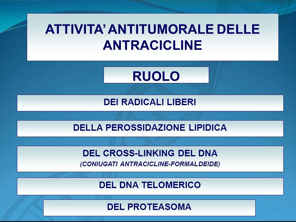 ATTIVITA ANTITUMORALE DELLE ANTRACICLINE DELLA PEROSSIDAZIONE LIPIDICA DEL CROSS-LINKING DEL DNA (CONIUGATI ANTRACICLINE-FORMALDEIDE) DEL DNA TELOMERI