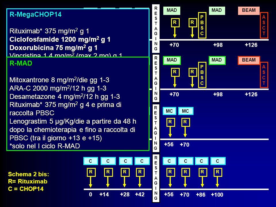 R MC R R MAD BEAM RR PBSCPBSC ASCTASCT R 0+14+28+42+70+98+126 RESTAGINGRESTAGING R CC R C R C MAD BEAM RR PBSCPBSC ASCTASCT R 0+14+28+42+70+98+126 RES
