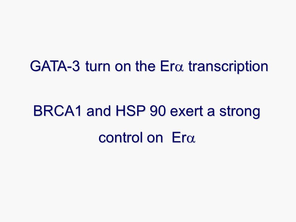 BRCA1 and HSP 90 exert a strong control on Er BRCA1 and HSP 90 exert a strong control on Er GATA-3 turn on the Er transcription
