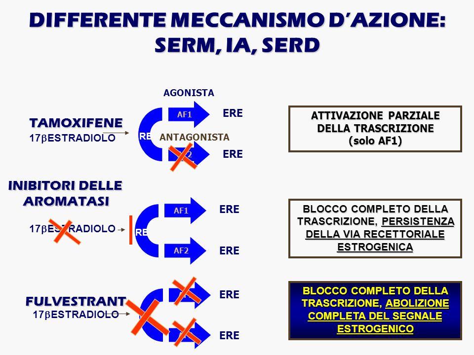 17 ESTRADIOLO AF1 AF2 TAMOXIFENE ERE ATTIVAZIONE PARZIALE DELLA TRASCRIZIONE (solo AF1) ANTAGONISTA AGONISTA INIBITORI DELLE AROMATASI BLOCCO COMPLETO
