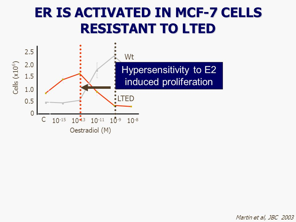 0 0.5 1.0 1.5 2.0 2.5 C Oestradiol (M) 10 -15 10 -13 10 -11 10 -9 10 -8 Cells (x10 6 ) Wt LTED Martin et al, JBC 2003 ER IS ACTIVATED IN MCF-7 CELLS R