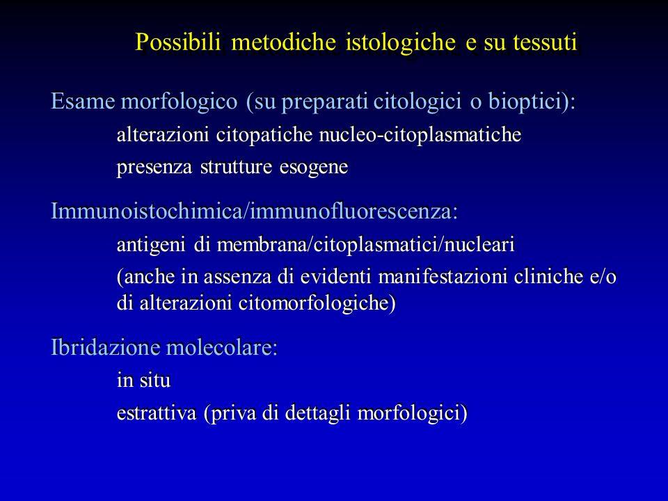 Esame morfologico (su preparati citologici o bioptici): alterazioni citopatiche nucleo-citoplasmatiche presenza strutture esogene Immunoistochimica/im