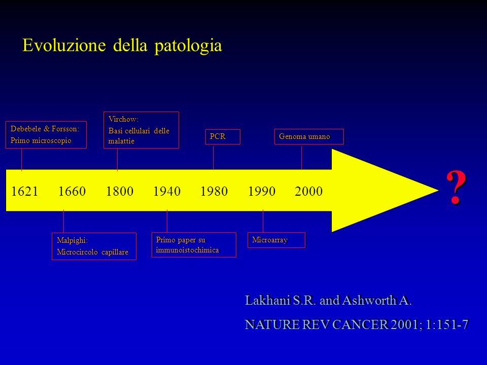 Lakhani S.R.and Ashworth A. NATURE REV CANCER 2001; 1:151-7 Lakhani S.R.