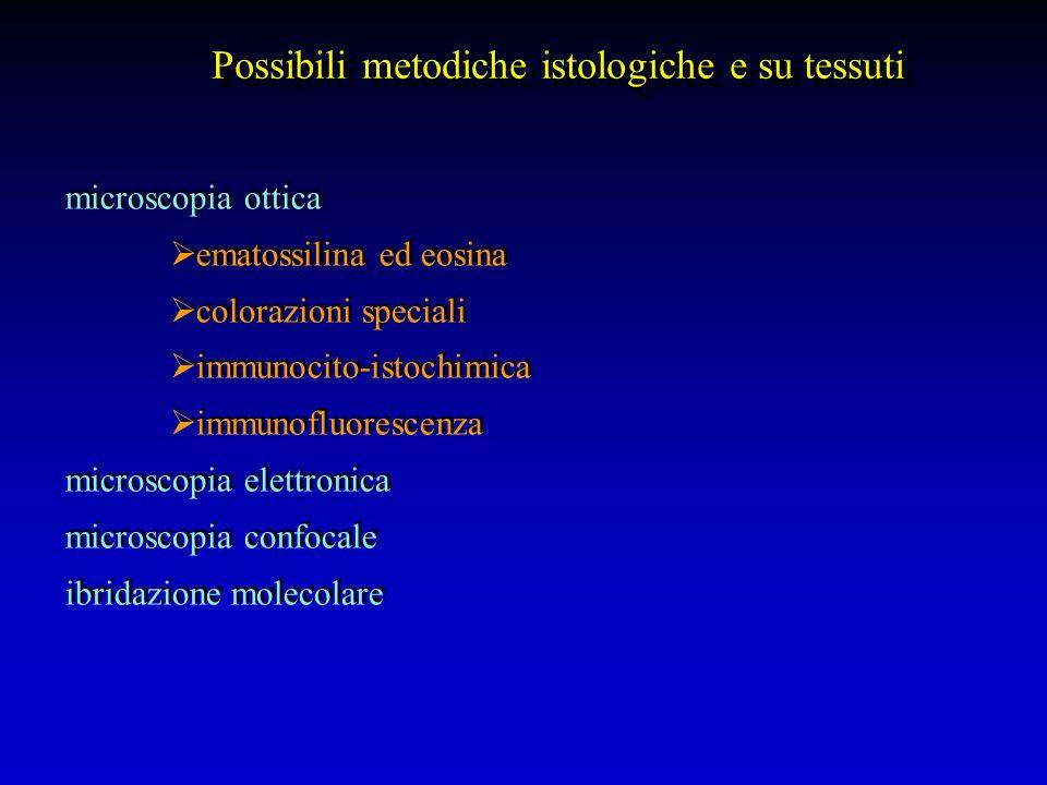 Esame morfologico (su preparati citologici o bioptici): alterazioni citopatiche nucleo-citoplasmatiche presenza strutture esogene Immunoistochimica/immunofluorescenza: antigeni di membrana/citoplasmatici/nucleari (anche in assenza di evidenti manifestazioni cliniche e/o di alterazioni citomorfologiche) Ibridazione molecolare: in situ estrattiva (priva di dettagli morfologici) Esame morfologico (su preparati citologici o bioptici): alterazioni citopatiche nucleo-citoplasmatiche presenza strutture esogene Immunoistochimica/immunofluorescenza: antigeni di membrana/citoplasmatici/nucleari (anche in assenza di evidenti manifestazioni cliniche e/o di alterazioni citomorfologiche) Ibridazione molecolare: in situ estrattiva (priva di dettagli morfologici)